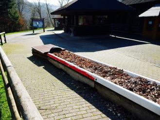 Rodelbahn Sommerbahn Wild- und Freizeitpark Gackenbach