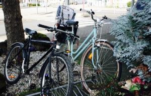 Rad Fahrrad Koblenz Kindinkoblenz Radweg Kind