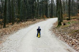 Niederwald Ausflug