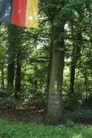 Stadtwald Koblenz Spaziergang Wanderung Kinder Wald Pilze Herbst